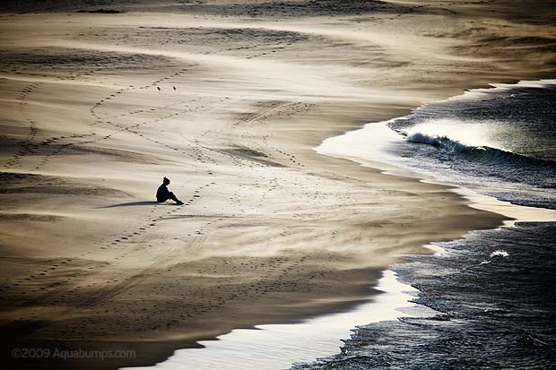 Aquabumps – Uge, Sydney's beach chronicler
