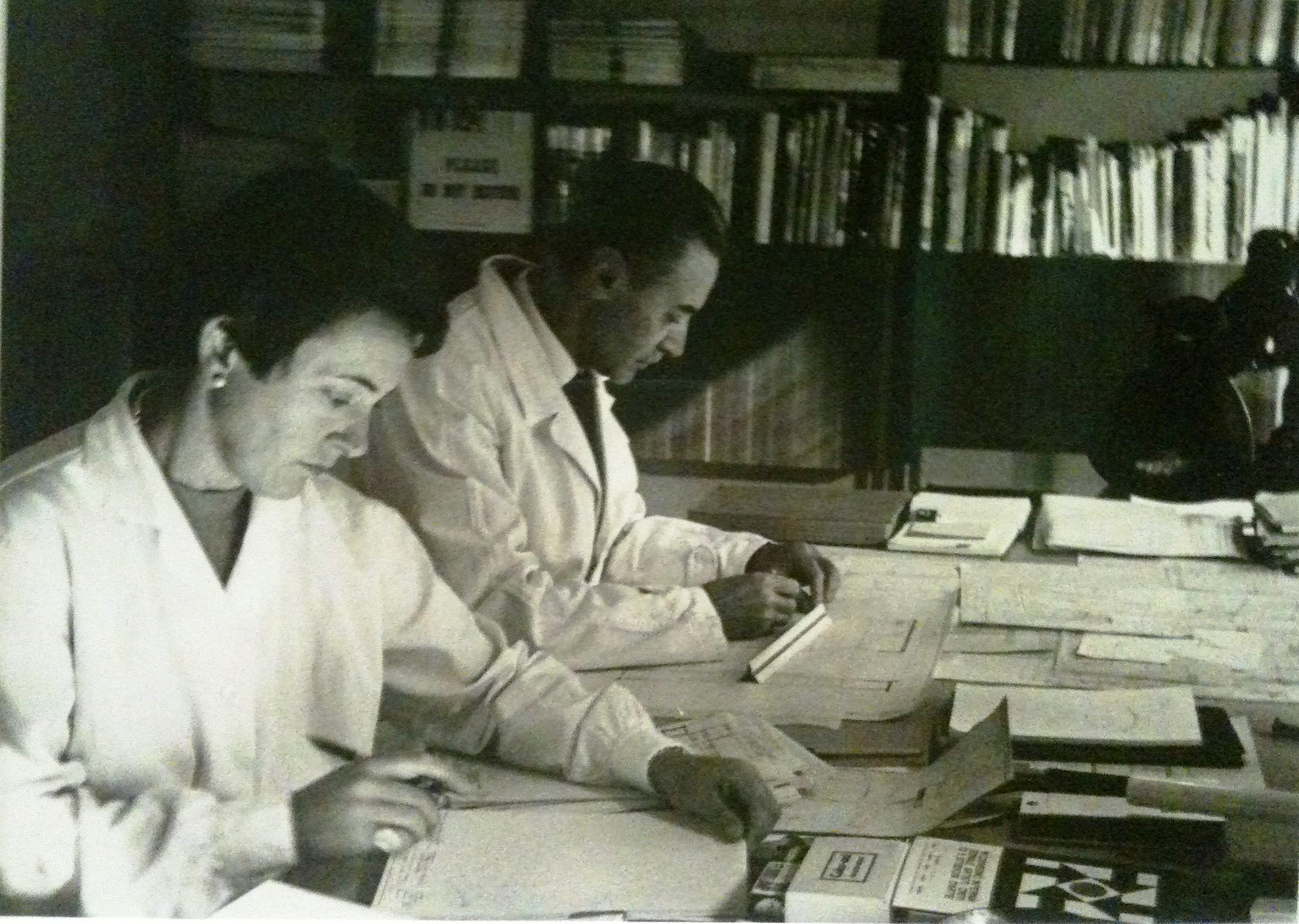 franca helg and franco albini