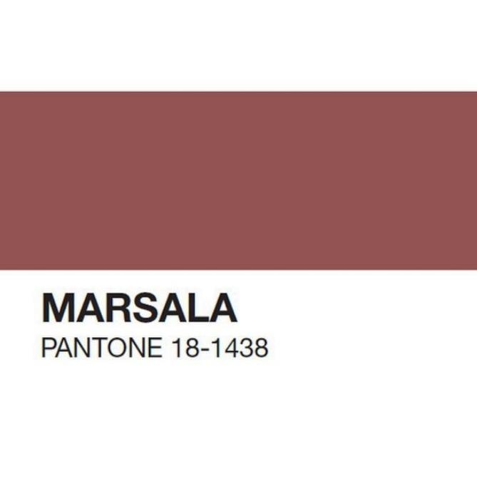 pantone marsala 2
