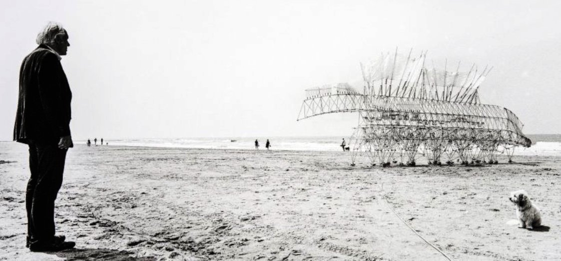 theo jansen on the beach