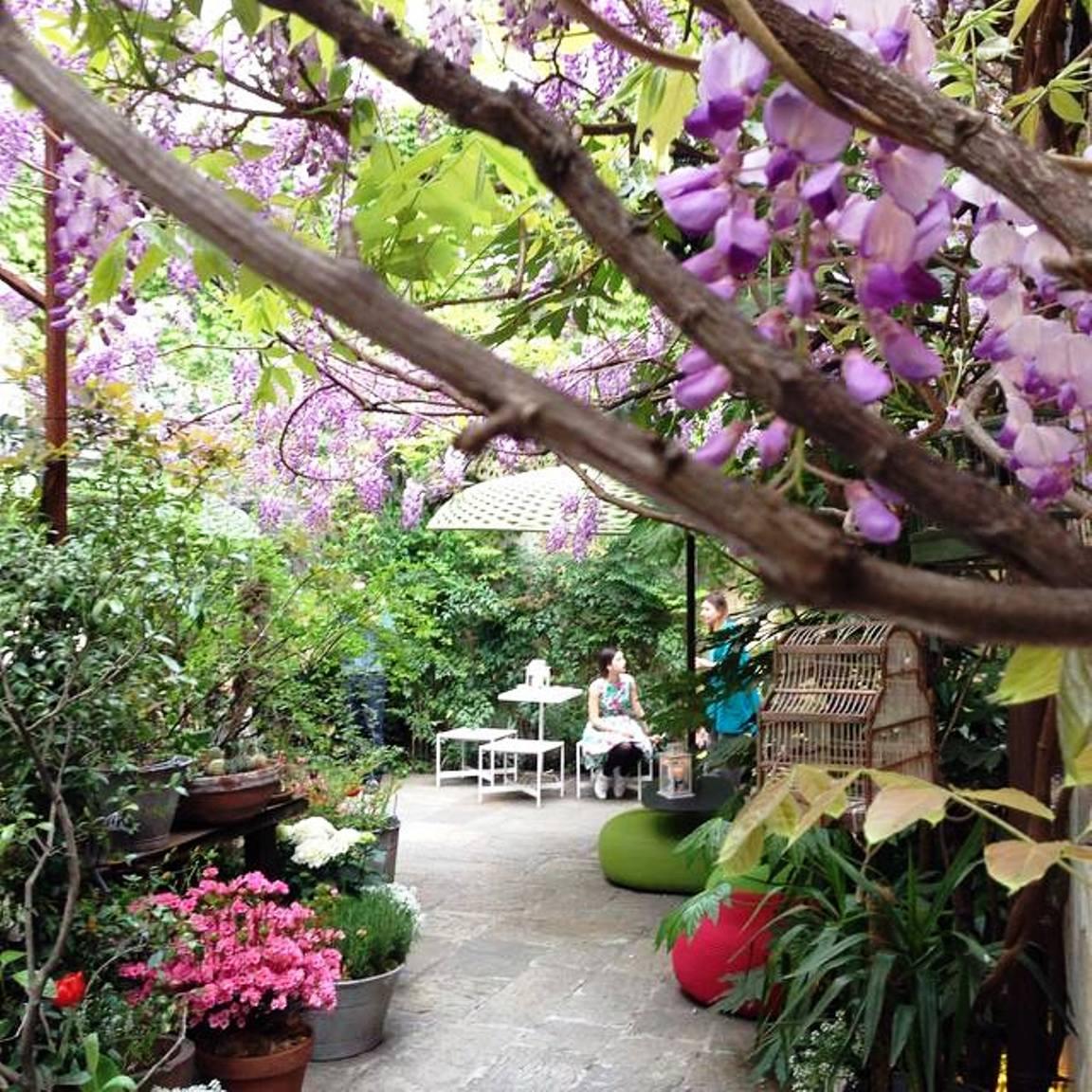 paola lenti rood top garden (2)
