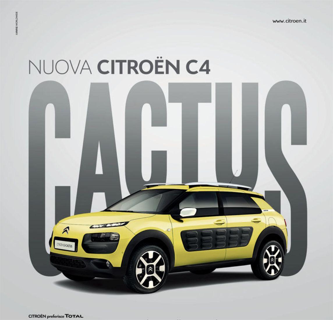campagna-c4-cactus