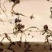 spider-monkeys-2000