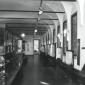eremitani-civic-museum-padua-1969-g