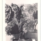 arieto bertoia cover 1987 8.jpg