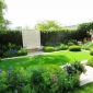 telegraph-garden-chelsea-flower-show-2014-12