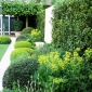 telegraph-garden-chelsea-flower-show-2014-6