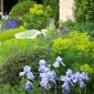 telegraph-garden-chelsea-flower-show-2014-7