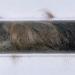 julie-rrap-hairline-crack-1992