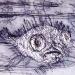 toadfish-2004