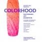 colorhood.jpg