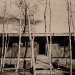 1952-the-doris-caesar-cottage-lakeville-ct