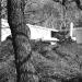 1962-the-frank-kacmarcik-house-st-paul-mn