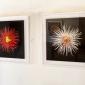 nick-bassett-exhibition-3