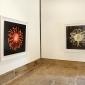 nick-bassett-exhibition-5