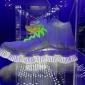 nike nature of motion salone milan 2016 (2)