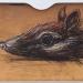myrmecobius-fasciastus-noombat-noombat-head-2011