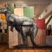 macropus-rufus-marlu-red-kangaroo 2011