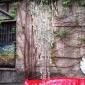 rossana-orlandi-salone-2014-courtyards-11