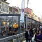 salone-milan-2014-navigli-grand-design-6