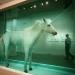 sothebys-2008-auction