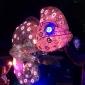 taronga zoo chameleon vivid sydney 2017