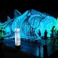 taronga zoo port jackson shark vivid sydney 2017