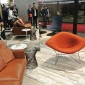 this is knoll 2016 salone milan (4)
