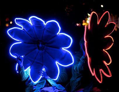 vivid festival 5