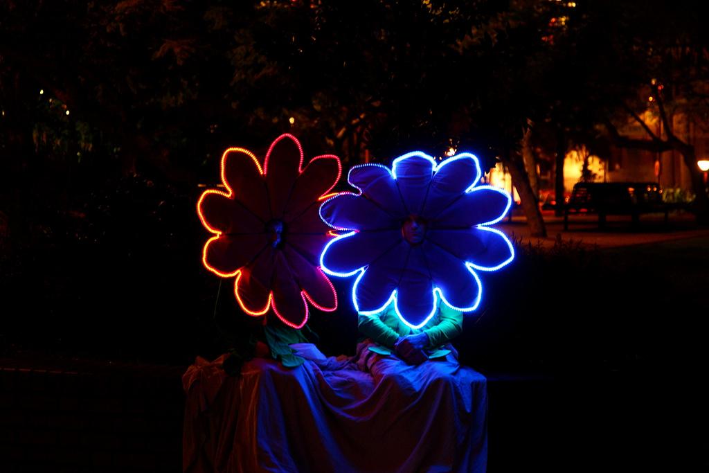 vivid festival 6