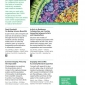 vivid-ideas-guide-8