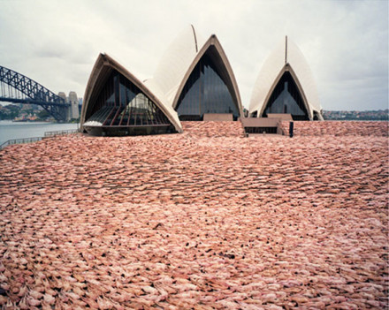 The Base – by Spencer Tunick @ Sydney Opera House