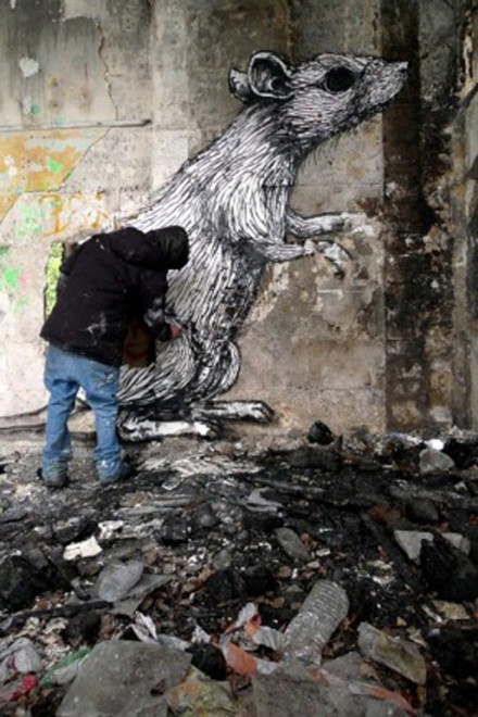 ROA in Australia – Urban Art meets the Outback