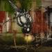 roa-birds-6