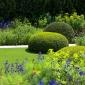 telegraph-garden-chelsea-flower-show-2014-10