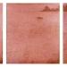 reverie-everlasting-safe-harbour-triptych