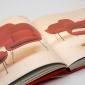 knoll-design-book-3