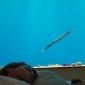 manta-underwater-hotel-1