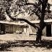 1950-the-hanson-house-huntington-ny