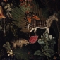 moooi museum of extinct animals (6)