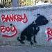 robbo / dog