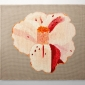 variegated_camellia