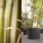 paola lenti shield salone milan 2016
