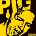 pig paper 14