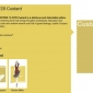 2015-spring-colour-report-custard