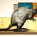 setonix-brachyurus-quakur-quokka-2011