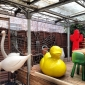 rossana-orlandi-salone-2014-courtyards-14