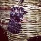 baskets from sardinia at antonio marras shworoom (2).jpg