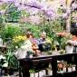 paoal lenti garden flowers (3).jpg