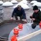 2003-skylight-repairs-3